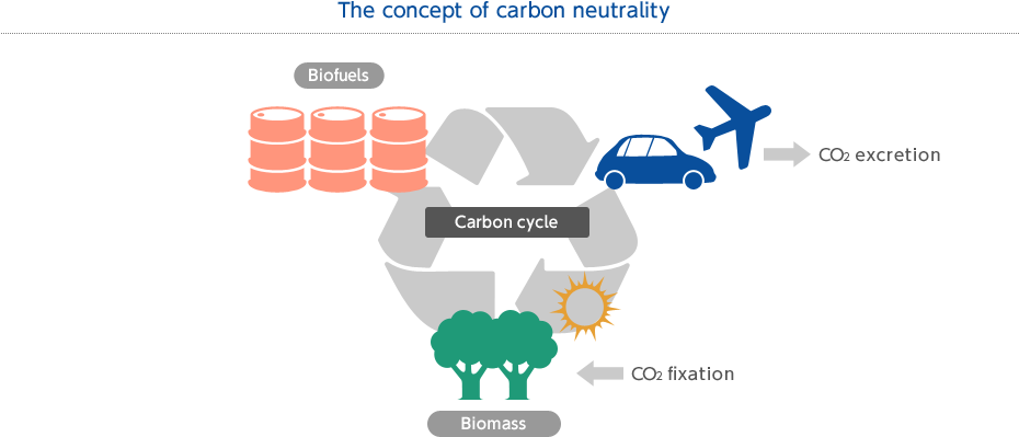 The concept of carbon neutrality