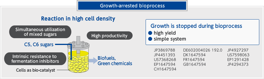 Growth-arrested bioprocess