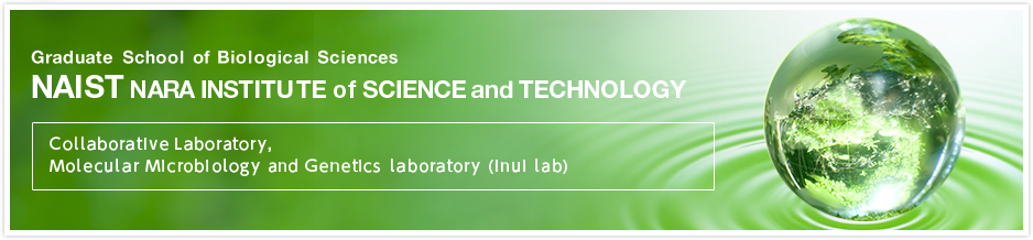 NAIST Collaborative Laboratory