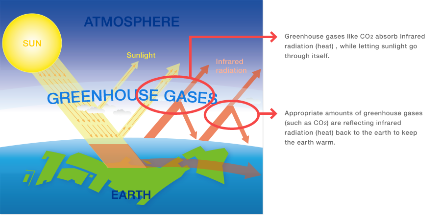 Greenhouse Effect And Global Warming Rite Systems